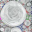 Multi Coloured Spirals