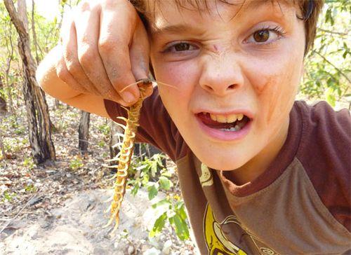 Tackling a centipede