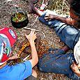 Crushing roots to make dye - Kakadu National Park : Kakadukid
