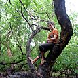 Exploring the wonders of Buffalo Farm -  Kakadu National Park : Kakadukid