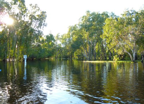 Magela Flood