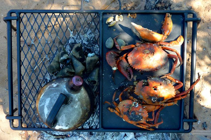 Mud crab feast