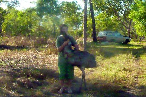 AA - Henry the Emu